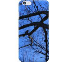 Graceful Winter Tree iPhone Case/Skin