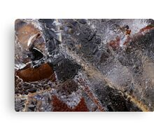 Hiking Trail Ice Abstract 2 Canvas Print