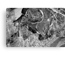 Hiking Trail Ice with Leaves 4 BW Canvas Print