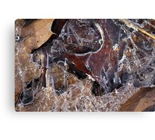 Hiking Trail Ice with Leaves 4 Canvas Print