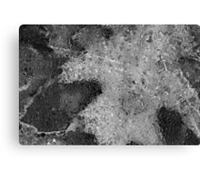Hiking Trail Ice with Leaves 6 BW Canvas Print