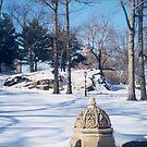 Snow View, Central Park, New York City by lenspiro