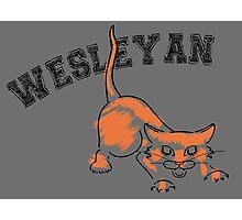 Wesleyan Bobcat Photographic Print
