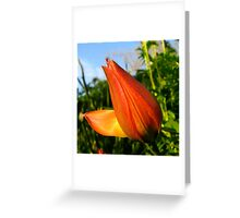 Blooming Red Greeting Card