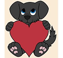 Valentine's Day Black Dog with Red Heart Photographic Print