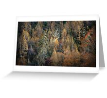 Autumn in Arrowtown, NZ Greeting Card