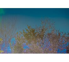 Blue Mystery Photographic Print