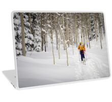 A backcountry walk Laptop Skin