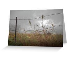 Rain In The Field Greeting Card