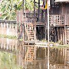 Local Thai village by SUBI