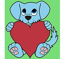 Valentine's Day Blue Dog with Red Heart Photographic Print
