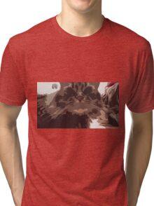 Fragmented Cat Tri-blend T-Shirt