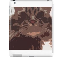 Fragmented Cat iPad Case/Skin