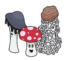 Mushroom Trio v. 2 by Maddi Breeden
