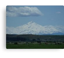 Mount Shasta and Friends Canvas Print