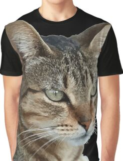 Stunning Tabby Cat Close Up Portrait Vector Isolated Graphic T-Shirt