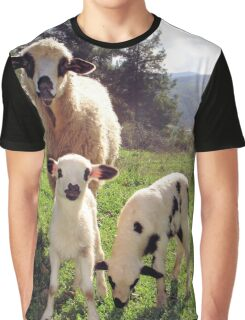 Ewe and Twin Spring Lambs  Graphic T-Shirt