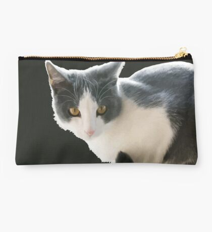 A Max And Mantle Bi Colour Cat Isolated Studio Pouch