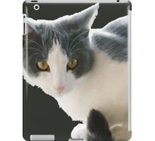 A Max And Mantle Bi Colour Cat Isolated iPad Case/Skin
