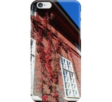 Old Facade iPhone Case/Skin