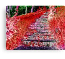 Stairway To Somewhere: A Fall Night Canvas Print