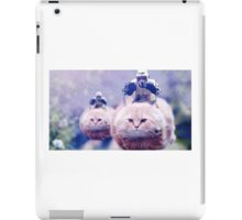 Star Wars speeder Bikes iPad Case/Skin