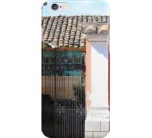 Brick House With Iron Gate iPhone Case/Skin