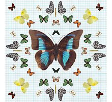 Butterfly kaleidoscope on Graph Paper Photographic Print