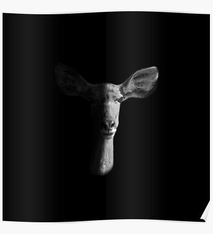 Dark Female Kudu Portrait Poster