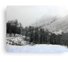 The Start of the Snow Canvas Print