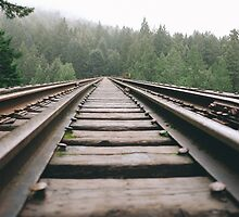 Railroad Forest by Squizzys
