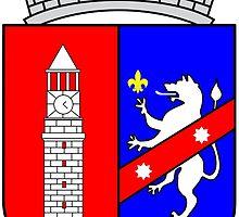 Coat of Arms of Tirana by abbeyz71