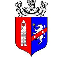 Coat of Arms of Tirana Photographic Print