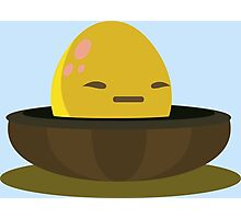 Firebog egg - glitch videogame Photographic Print