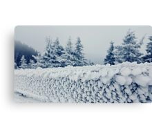 fence frost Canvas Print