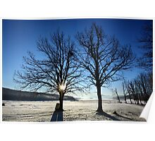Early morning frost - Plastiras lake Poster