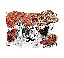 Little Red Riding Hood Print with wolf, forest Photographic Print
