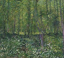 Vincent Van Gogh - Trees and undergrowth, July 1887 - 1887 by famousartworks
