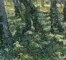 Vincent Van Gogh - Undergrowth, July 1889 - 1889 by famousartworks