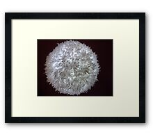 Furry Star Framed Print