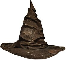 Harry Potter - Sorting Hat Photographic Print