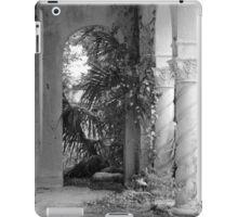 Twisted Columns iPad Case/Skin