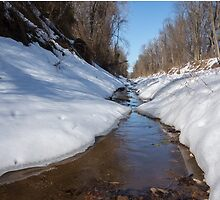 Stream on a winter day by CSSphotos