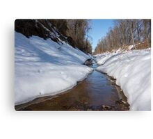 Stream on a winter day Canvas Print