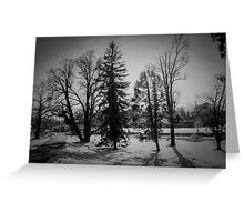 Dramatic trees in the snow Greeting Card