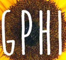 gamma phi sunflower Sticker