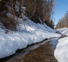 Winter Stream by CSSphotos
