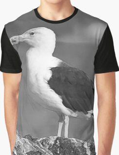B\W Up Close Gull Graphic T-Shirt