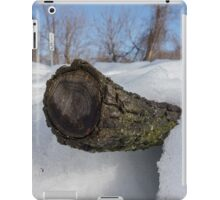 Log In The Snow iPad Case/Skin
