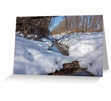 HDR Snowy pond Greeting Card
